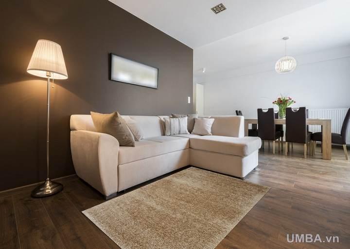 phương án chọn thảm phòng khách theo màu sắc nội thất hoặc sofa