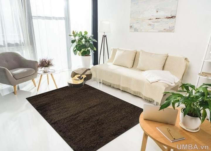 Hình ảnh thảm phòng khách một màu nâu